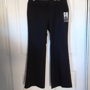 Express studio pants